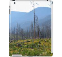 Montana Mountains  iPad Case/Skin