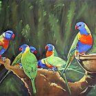Rainbow lorikeets australia by Audrey  Russill