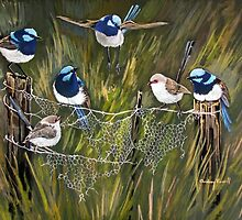 Blue wrens in the australian bush by Audrey  Russill
