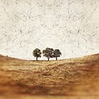 These Three Trees by © Karin (Cassidy) Taylor