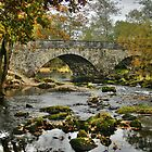 Bridge in Lake District, England by Jennifer Vollebregt