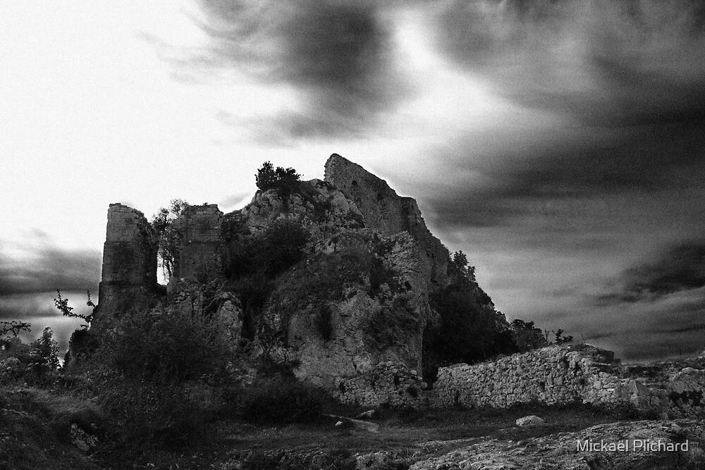 Château de Roquefixade by MickP