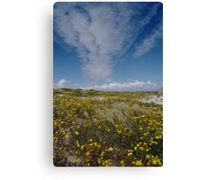 Spring is Beautiful Canvas Print