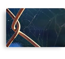 Webbed Fence Canvas Print