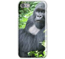 Male Mountain Gorillas in the wild  iPhone Case/Skin