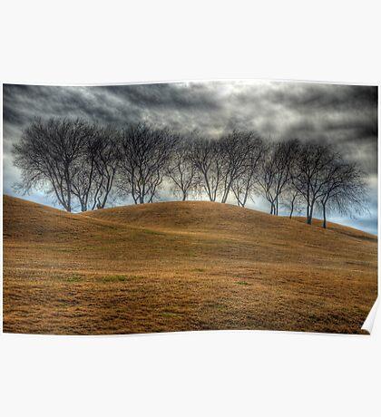 Parched Landscape Poster