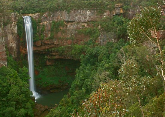 Belmore Falls ... with trees by Michael Matthews