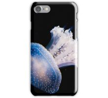 Spotted Jellyfish (phyllorhiza punctata) in an Aquarium  iPhone Case/Skin