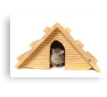 Successful mouse living in a wooden house Canvas Print
