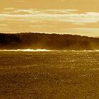 Sepia Tathra Headland by SimplisticPhoto