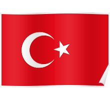 Turkey - Standard Poster