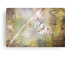 Once Upon A Butterfly Canvas Print