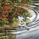 Ripples of Fall by Monnie Ryan