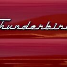 1955 Ford Thunderbird Rear Tail Emblem by onyonet photo studios