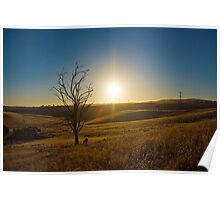 A Sunburnt Country - Sunset on the Hills of Kanmantoo, South Australia  Poster