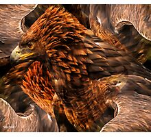 Designs Inspired By Nature: Golden Eagle Photographic Print