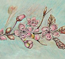 cherry blossom flowers by thuraya arts