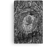 Heart Trees Canvas Print