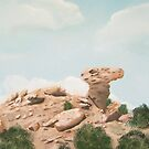 Camel Rock New Mexico USA  ~ Oil Painting by Barbara Applegate