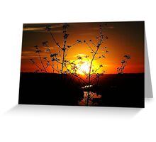 Sensational Sunset Greeting Card
