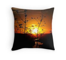 Sensational Sunset Throw Pillow