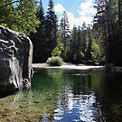 Muir Rock  by FishmanPhoto