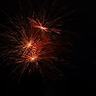 Beautiful Explosion by Penny Rinker