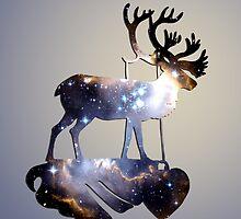 Reindeer by infloence