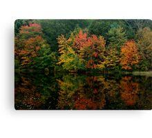 Rhode Island Foliage Canvas Print