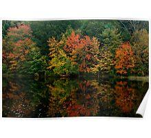 Rhode Island Foliage Poster