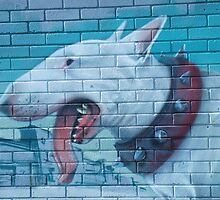 Rocket01- Bull Terrier by fiona42