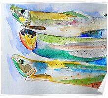 Pesce Fresco Poster