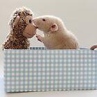 Poppy and friend by Ellen van Deelen
