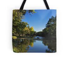 Splash of Fall Tote Bag