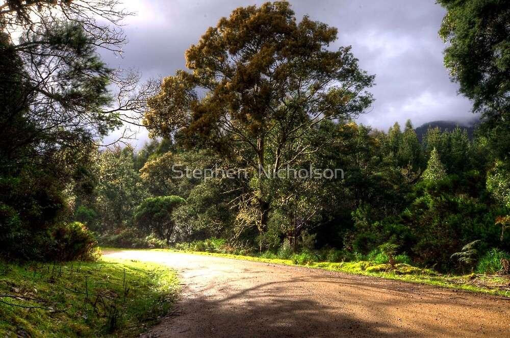 A Tassy country Road by Stephen  Nicholson