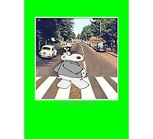 Chicot the Hippo, Classic Album - Shabby Lane Photographic Print