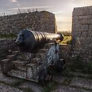 Cannon on Berry Head by Robbie Labanowski