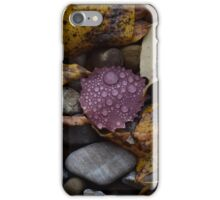 Fall leaves and raindrops iPhone Case/Skin