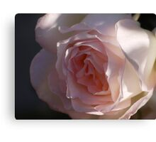 One rose is one world  Canvas Print