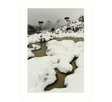 blizzard... Art Print