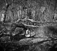 Music Nature: Guitar 2 by RedKitchen