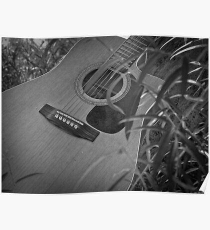 Music Nature: Guitar 6 Poster