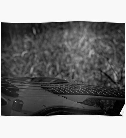 Music Nature: Bass 1 Poster