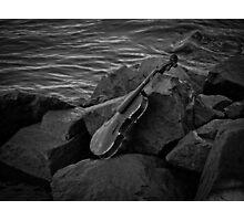 Music Nature: Violin 1 Photographic Print
