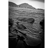 Music Nature: Violin 8 Photographic Print