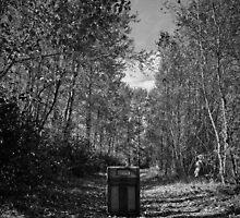 Music Nature: Radio 1 by RedKitchen