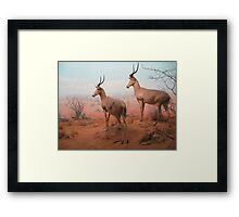 More from the museum Framed Print