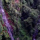 Waterfall in the Rainforest by MardiGCalero