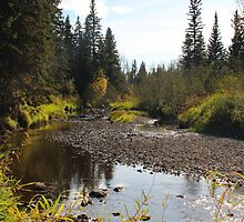 whitemud creek by Amanda Campeau