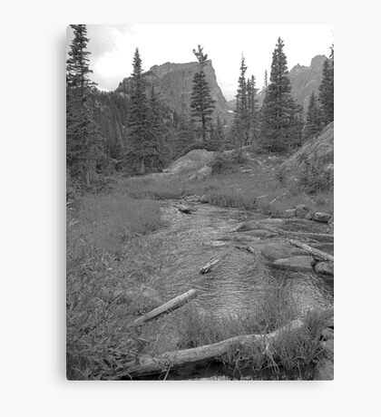 River at Rocky Mountain National Park Canvas Print